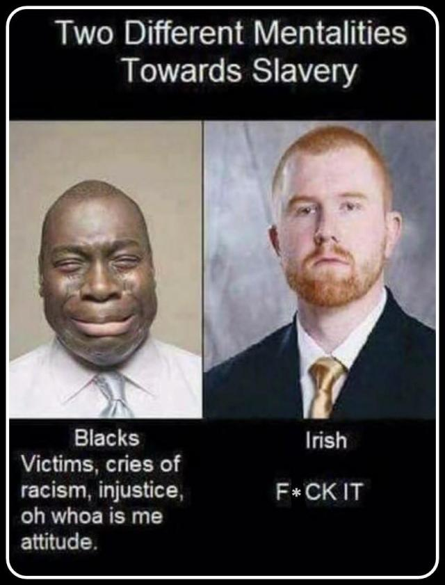 Black slavery vs. the Irish